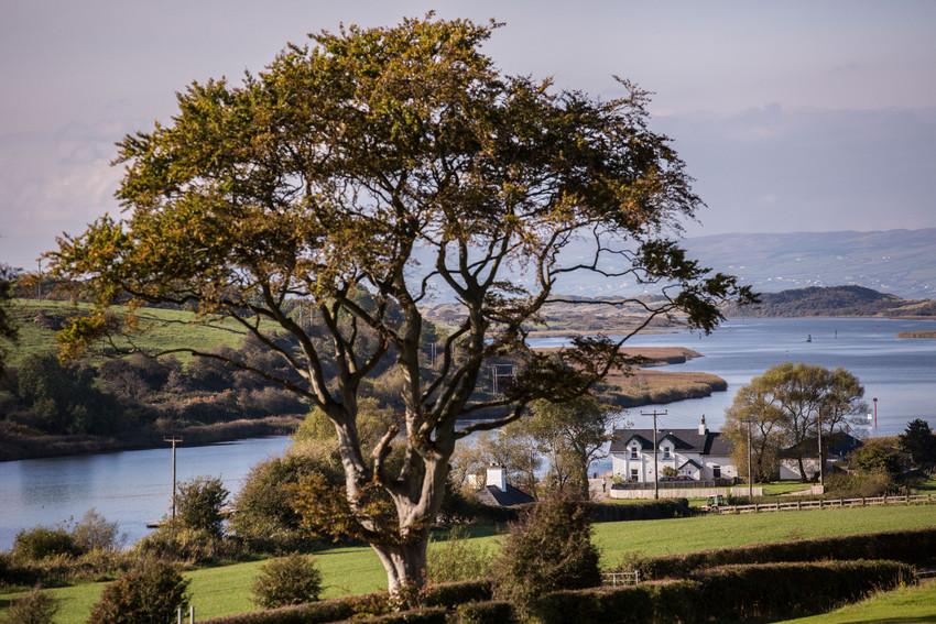 Coleraine - Bann view