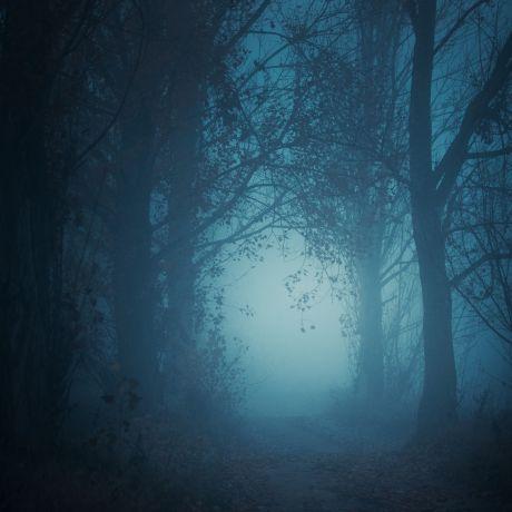 Northern Ireland Short Horror Film Showcase