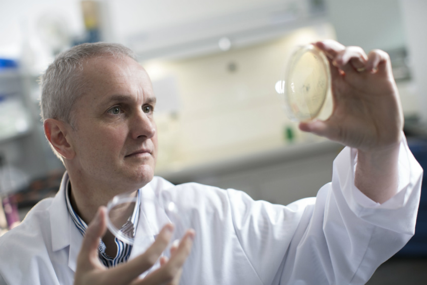 Ulster University research set to combat antibiotic resistance for acne treatment