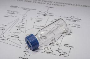 BMS111 Analytical Chemistry Workshop