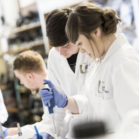 Global Webinar | Biomedical Sciences