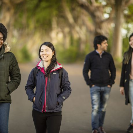 Global Webinar   WhatsApp Information Session for Overseas Students