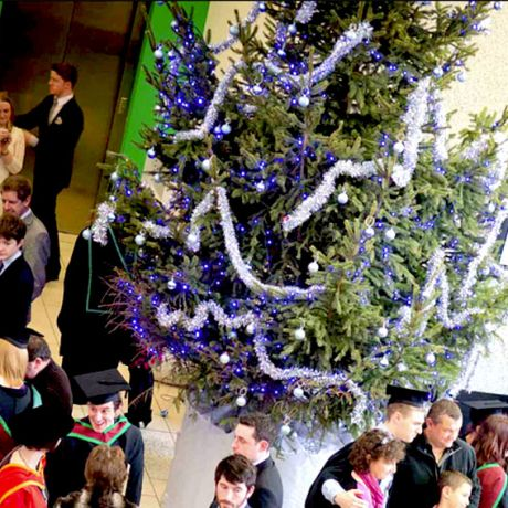 Campus Christmas Receptions