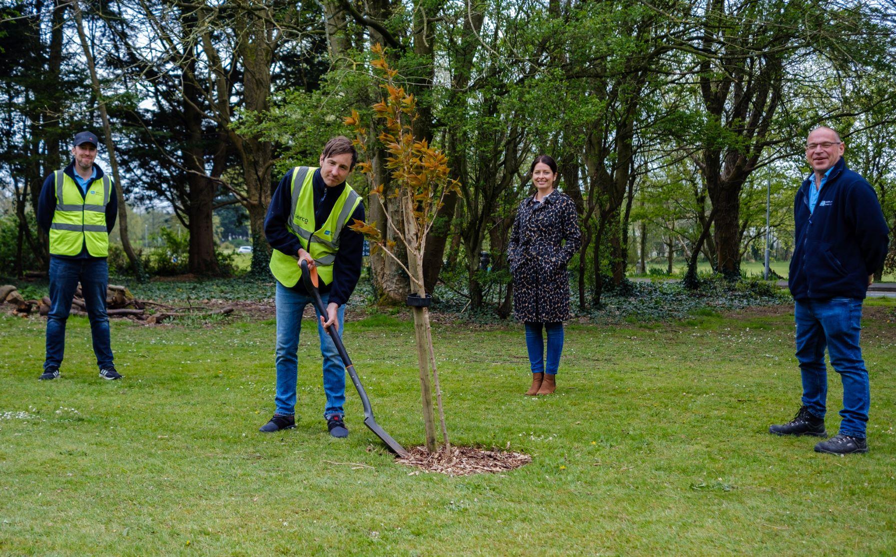 COVID-19 Testing Centre staff plant tree at Coleraine